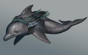 Dolphin by Matthew Cowdery